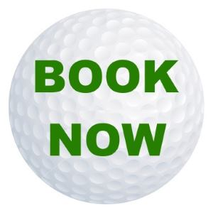 golf ball with book now writing